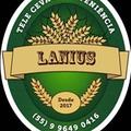 Lanius T. C.