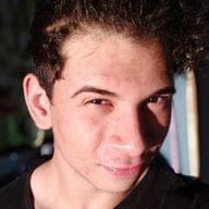 Freelancer Vinicius P. D. O.