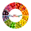 Freelancer Fruttine P. d. F.