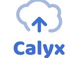 Calyx A.