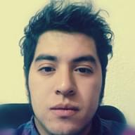 Freelancer José L. T. M.