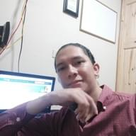 Freelancer Ricardo D. L.