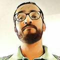 Freelancer Plinio B.
