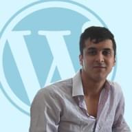 Freelancer DiegoP.