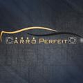Freelancer Carro P.